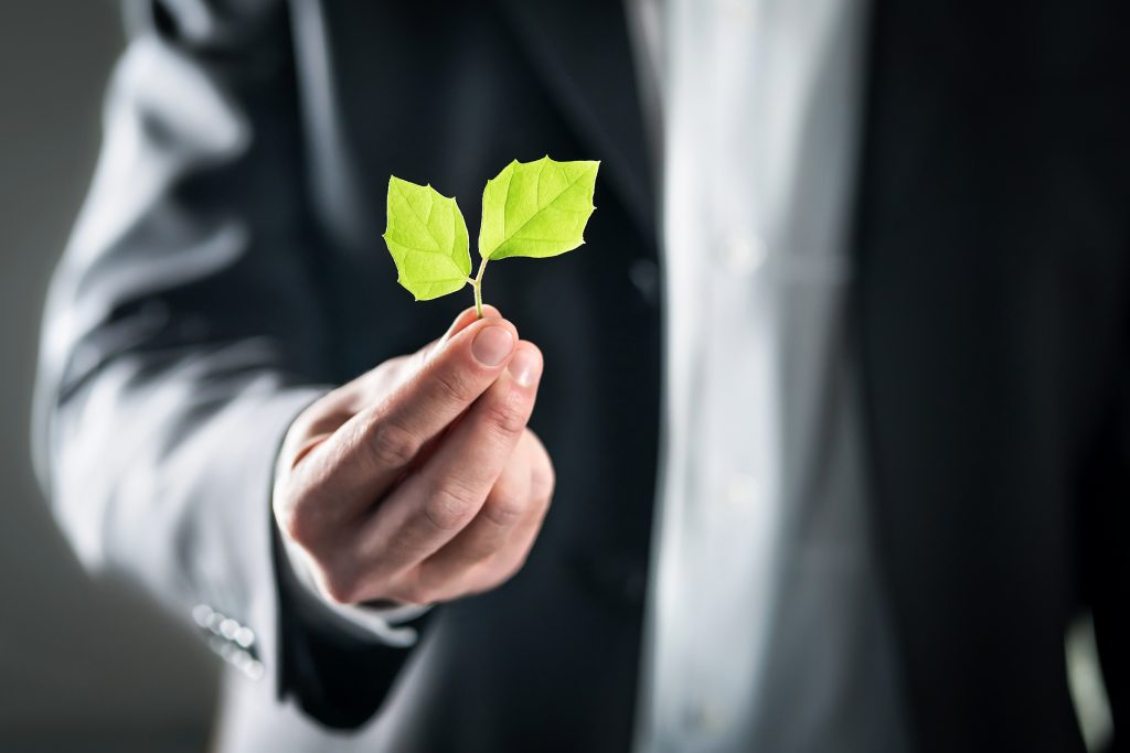 Businessman's hand holding stem with two leaves, his body is blurred in the background