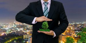 Businessman holding miniature tree in his palm, with other hand protecting the top