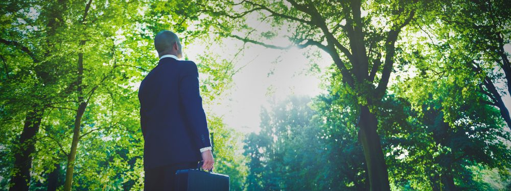 Businessman holding a briefcase standing in a forest with trees all around