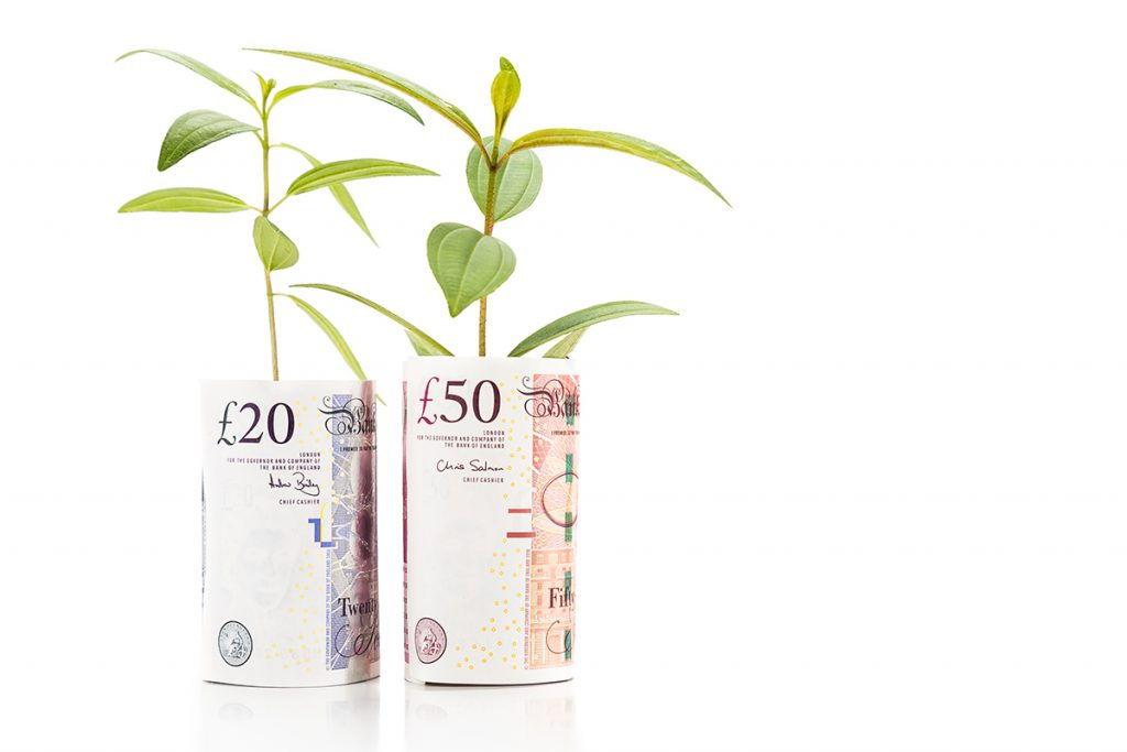 Rolled twenty and fifty-pound notes with spouts growing, an increase in reassurance for savers