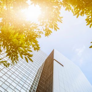 portion of trees against office buildings, commercial lending