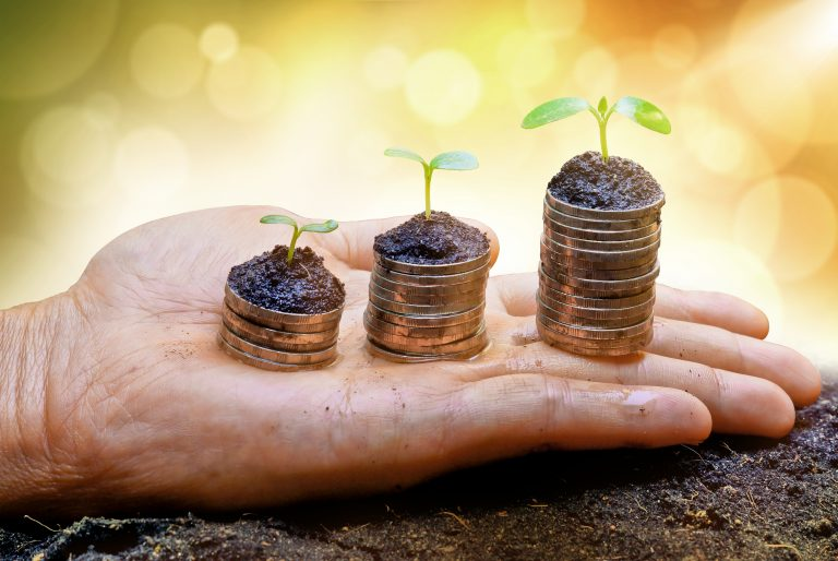 In the palm of a hand, trees grow on stacks of coins as ESG increases