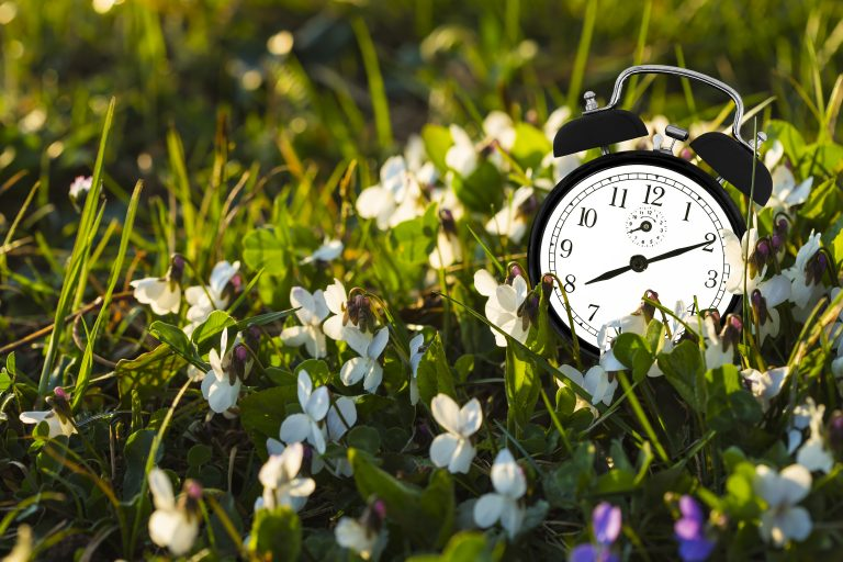 Alarm clock sitting in field as a warning not to be late to get insurance protection